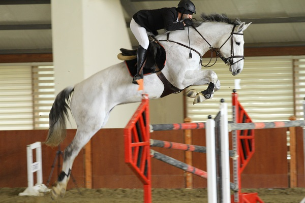 Polad Cup Jumping show will be held.