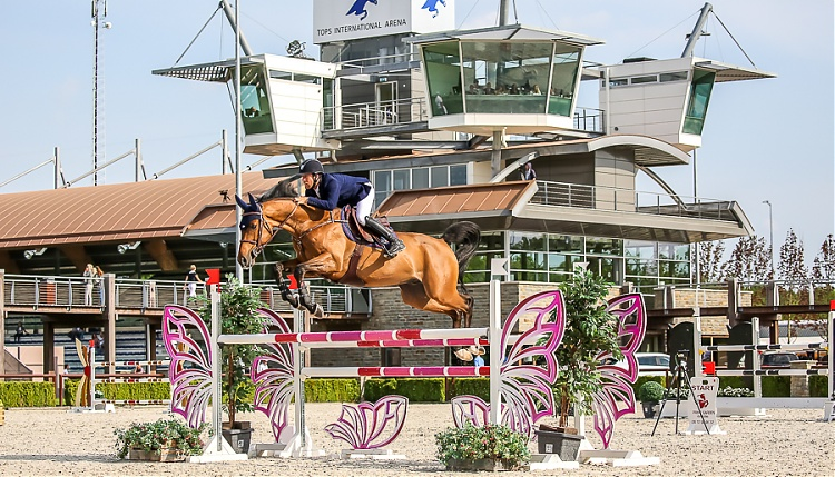AZE Rider Patrick Mc Entee got winning place in Valkenwaard (CSI2*)