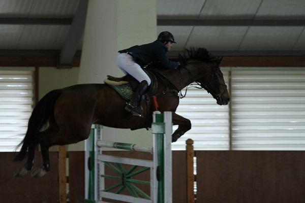 """Elite Horse & Polo Club"" turnirinə yekun vurulub."