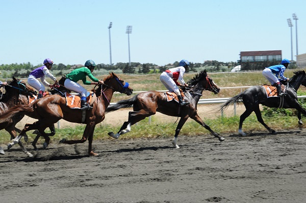 Equestrian Federation of Azerbaijan Republic held Racing on May 19, 2018.